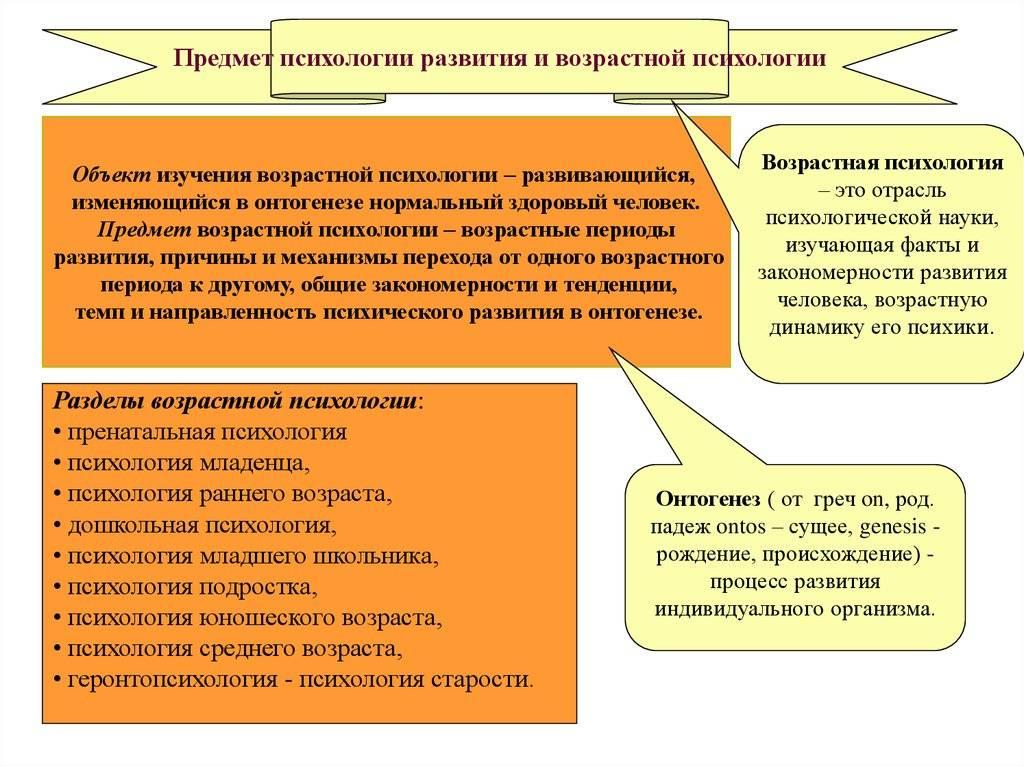 Возрастная психология. этапы развития ребенка