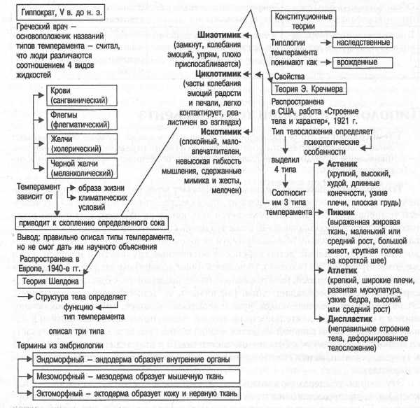 Типы темперамента человека и их краткая характеристика