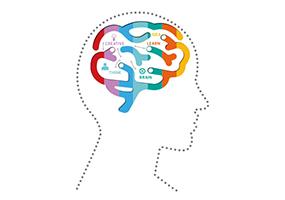 Понятие уровень интеллекта или коэффициент интеллекта (iq)