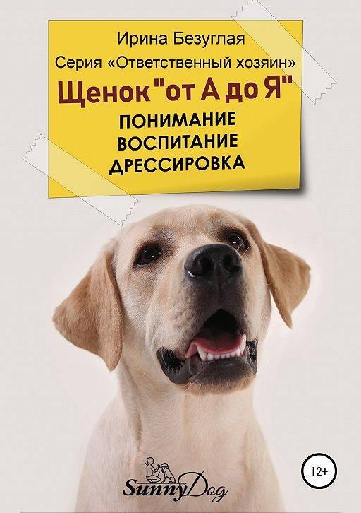 Воспитание собаки: выбираем линию поведения | дрессировка и воспитание взрослой собаки и щенка | сайт о маленьких собачках и не только