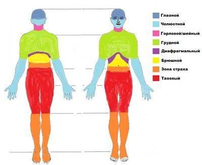 Телесные блоки: 7 упражнений вильгельма райха
