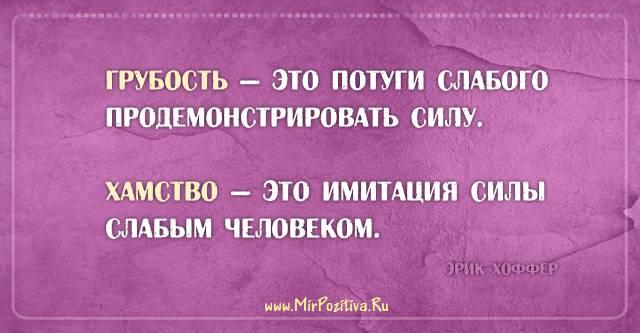 Как правильно реагировать на хамство? советы по борьбе с хамами   kadrof.ru