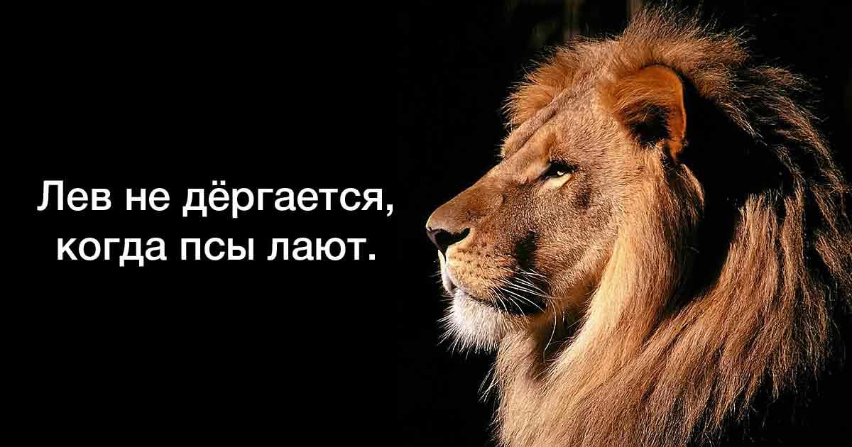 Чем сильный человек отличается от слабого