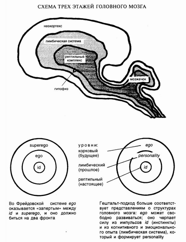 Ретрофлексия