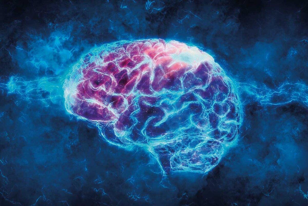 Понятие о высшей и низшей нервной деятельности. развитие представлений о высшей нервной деятельности. методы исследования внд