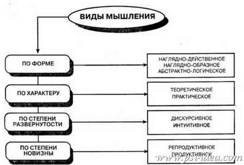 Понятие видов мышления: какие бывают, краткое описание основных типов, таблица