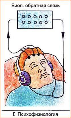 Читать книгу основы психофизиологии игорь дикий : онлайн чтение - страница 1