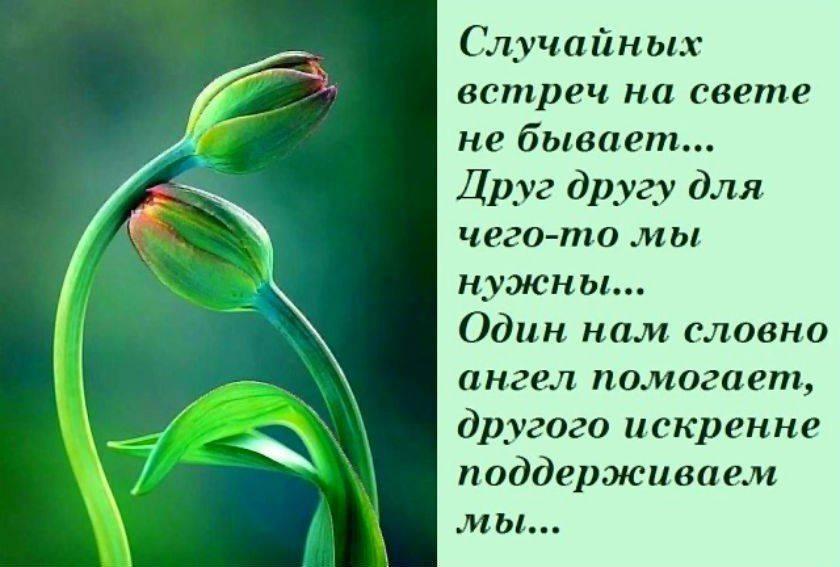 Кто такие православные психологи и чем они занимаются - афиша daily