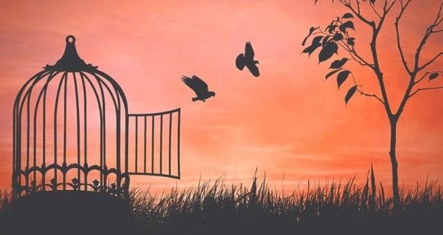 Психология: заставить - бесплатные статьи по психологии в доме солнца