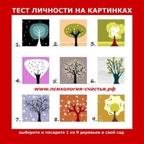 Личность — что это такое, какие качества ее характеризуют, примеры выдающихся сильных личностей | ktonanovenkogo.ru