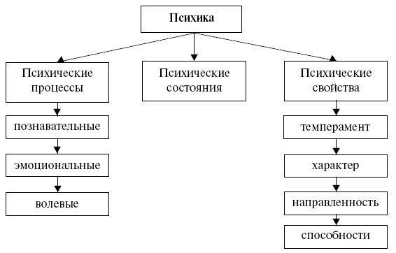 Типы личности в психологии — разновидности