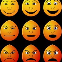 Читать книгу психология лжи и обмана. как разоблачить лжеца евгения спирицы : онлайн чтение - страница 10