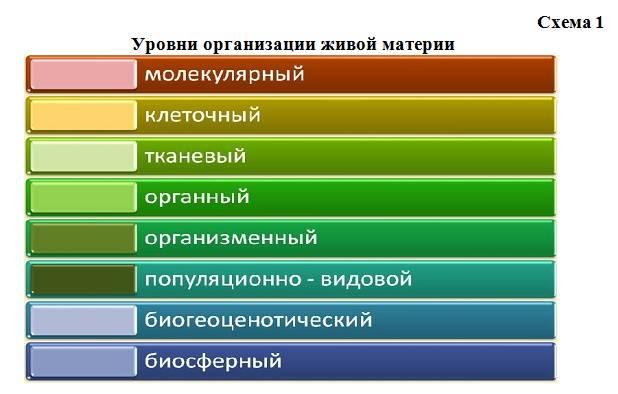Что такое темперамент человека, его виды и характеристики