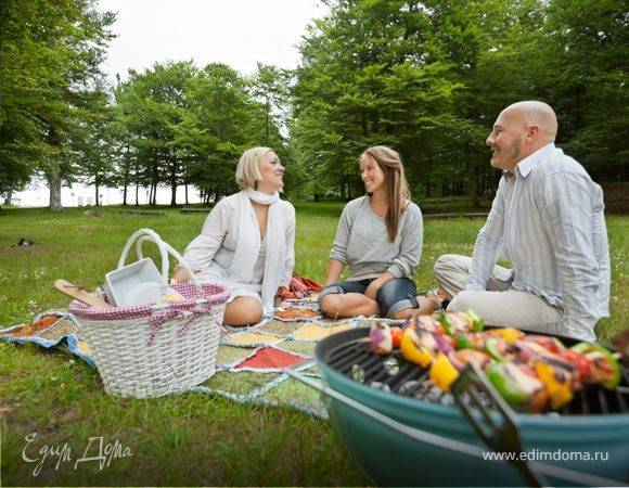 Правила проведения пикников