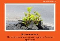 Николай козлов: синтон | психология | тренинги :: архив жизнь и новости