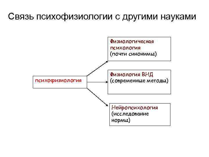 Системная психофизиология — википедия переиздание // wiki 2