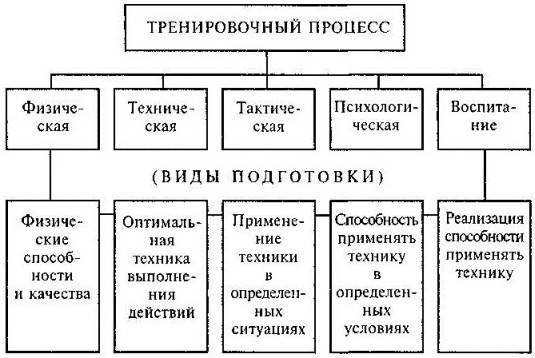 Должностная инструкция главного тренера