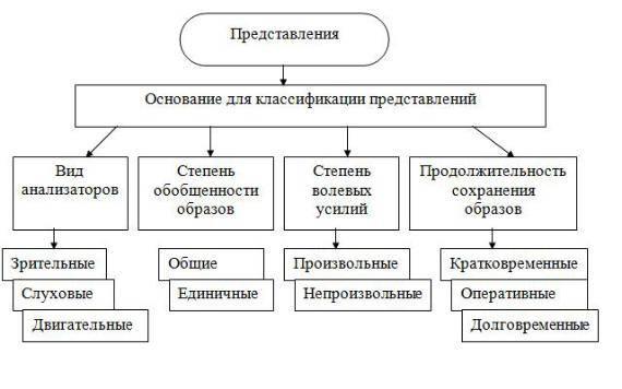 Виды представлений