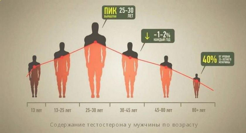 В каком возрасте снижается либидо у мужчин