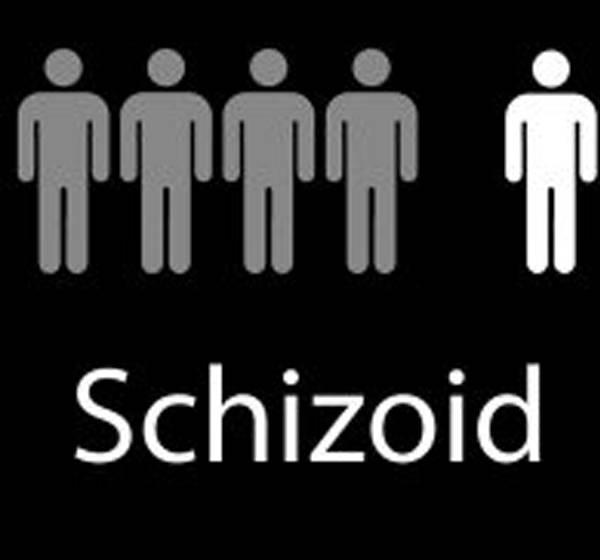 Знакомьтесь: шизоид!