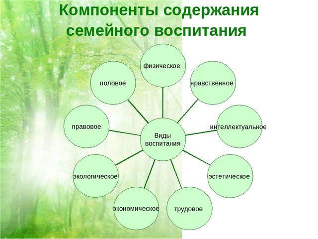 Современная образовательная среда, как фактор духовно-нравственного воспитания личности