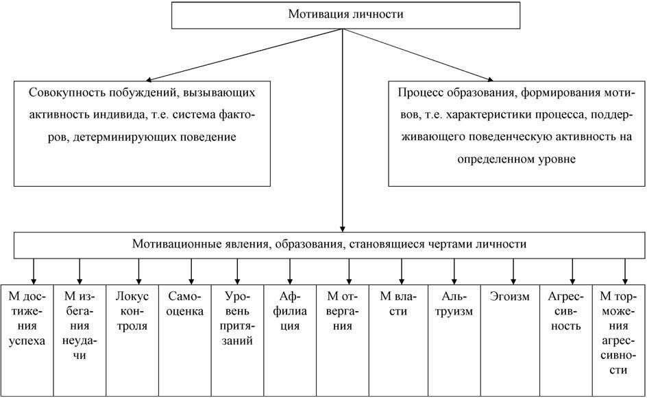 Направленности личности: виды, формы и их характеристики