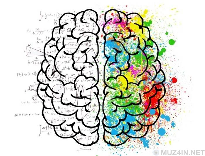 Памятка по когнитивным искажениям