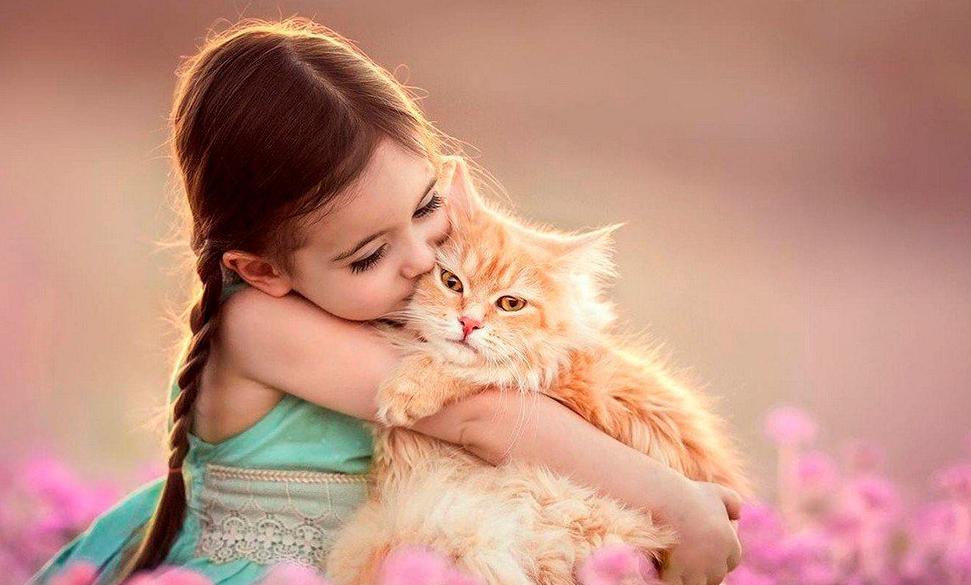 Психологическая помощь животному: им тоже нужен психолог - животные, уход за животными, зоопсихолог, стресс у животного