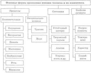 Смысловое структура слов