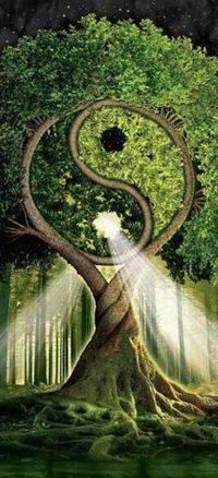 Психология: инь янь индуизм - бесплатные статьи по психологии в доме солнца