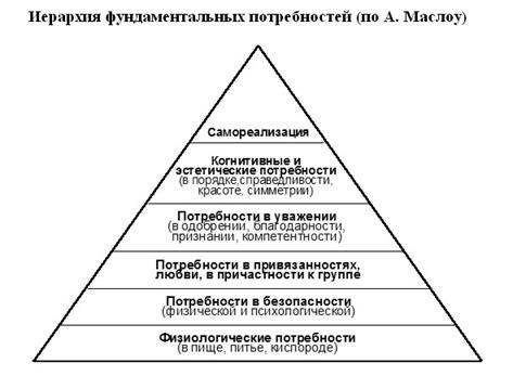 Направленность личности: три главных вектора жизни