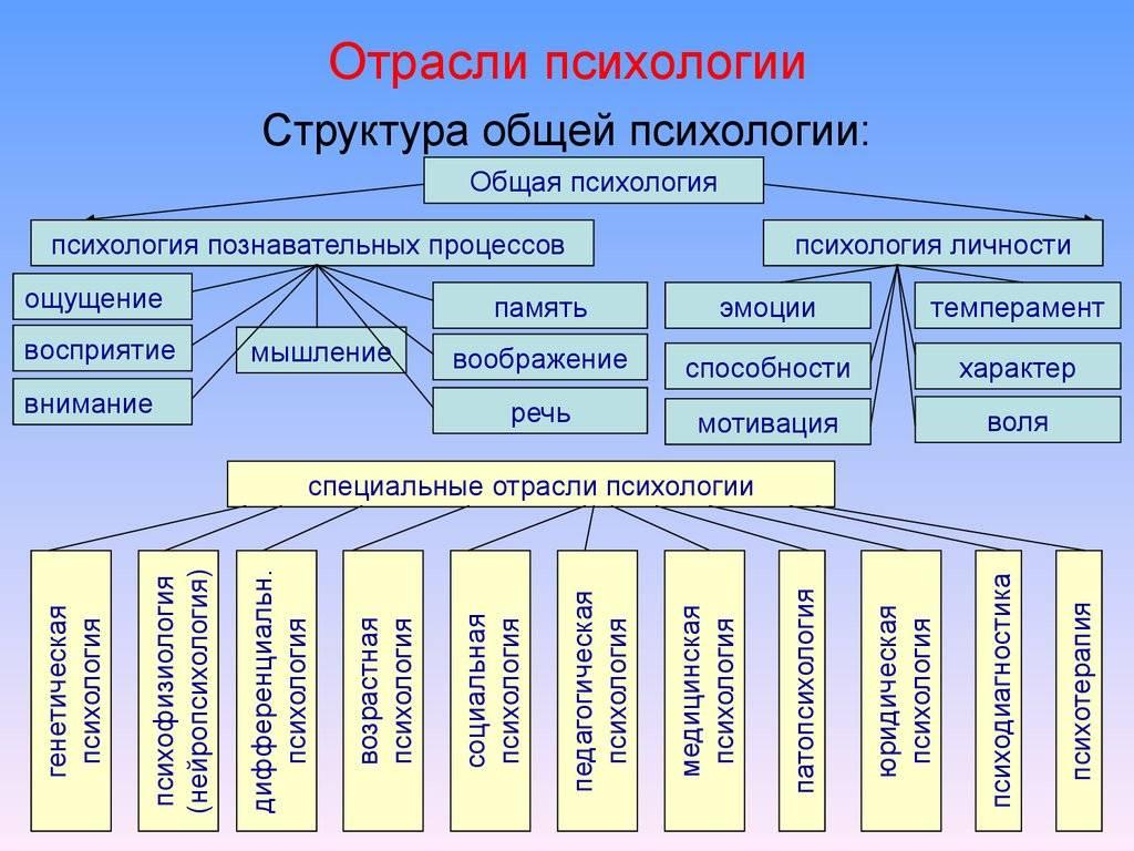 Краткая информация про отрасли психологии