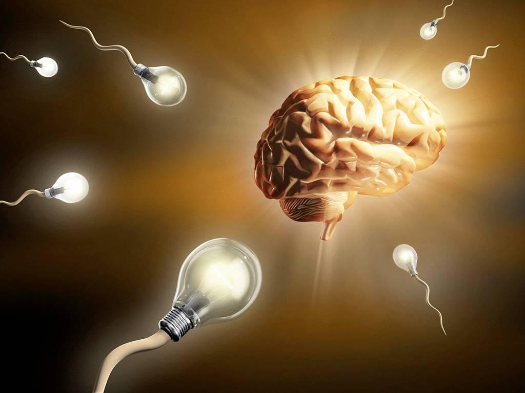 Как работает интуиция: теория «зеркальных нейронов» и функция интуиции юнга