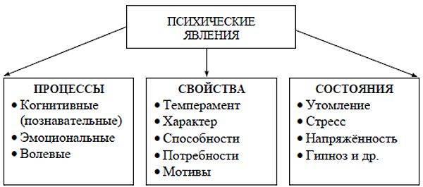 Психология личности человека — что о ней нужно знать