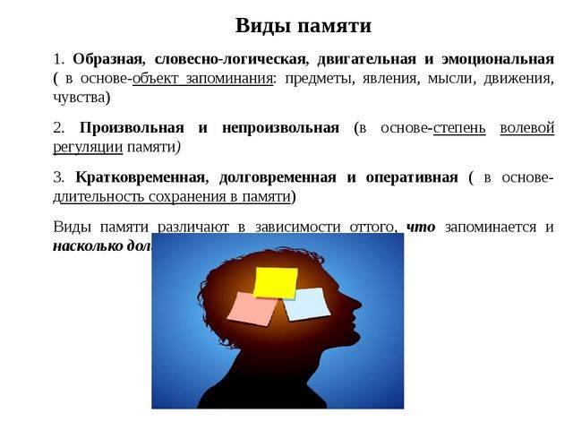 Виды памяти, их особенности