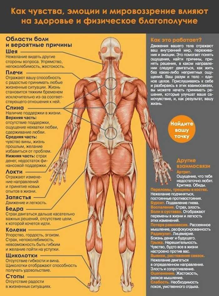 7 упражнений райха: избавляемся от телесных блоков