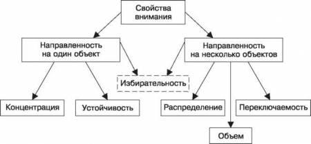 Виды внимания в психологии. функции и виды внимания
