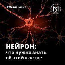 Психология: постоянные ошибки - бесплатные статьи по психологии в доме солнца