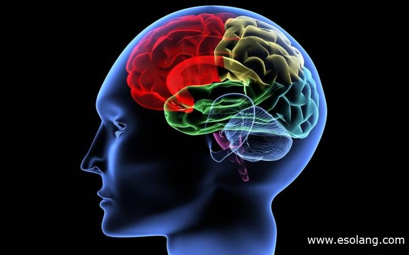 Психология: ребефинг - бесплатные статьи по психологии в доме солнца