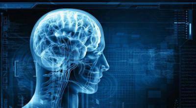 Читать книгу психофизиология состояний человека е. п. ильина : онлайн чтение - страница 1