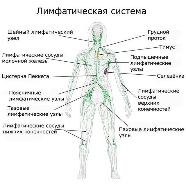 Индивидуальный подбор упражнений для лица