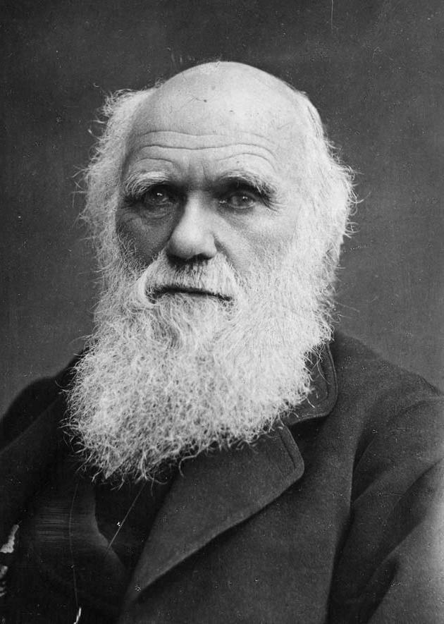Дарвин чарльз