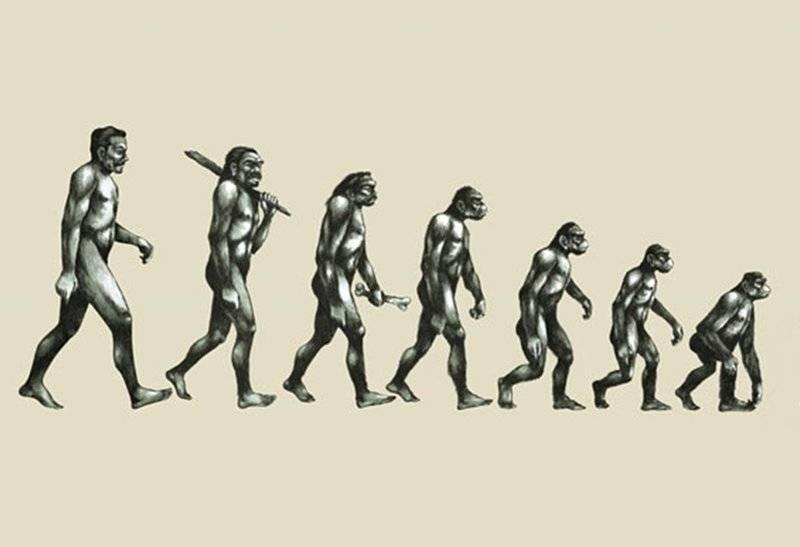 Психология: деградация человека - бесплатные статьи по психологии в доме солнца
