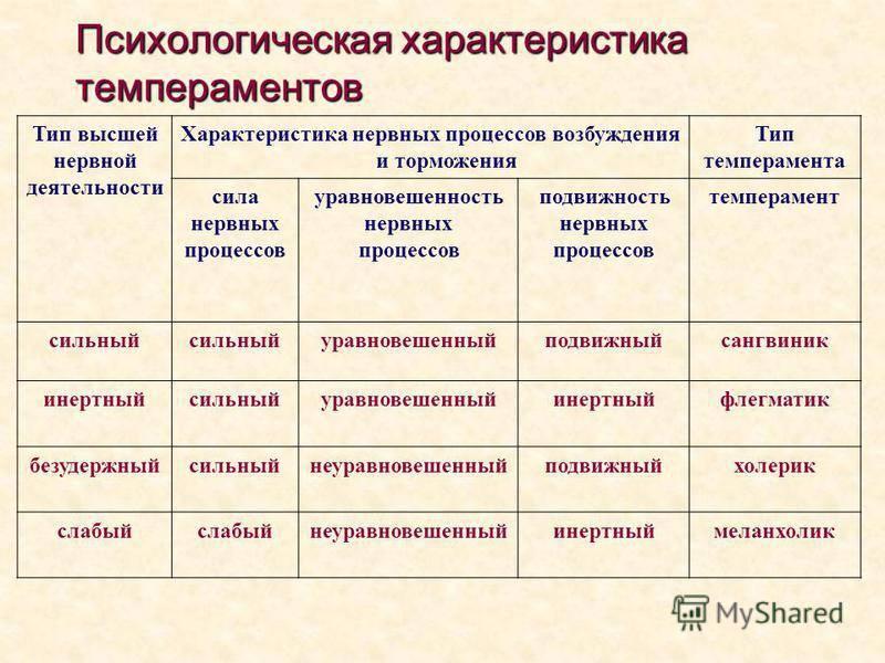 Темперамент человека: типы и характеристика