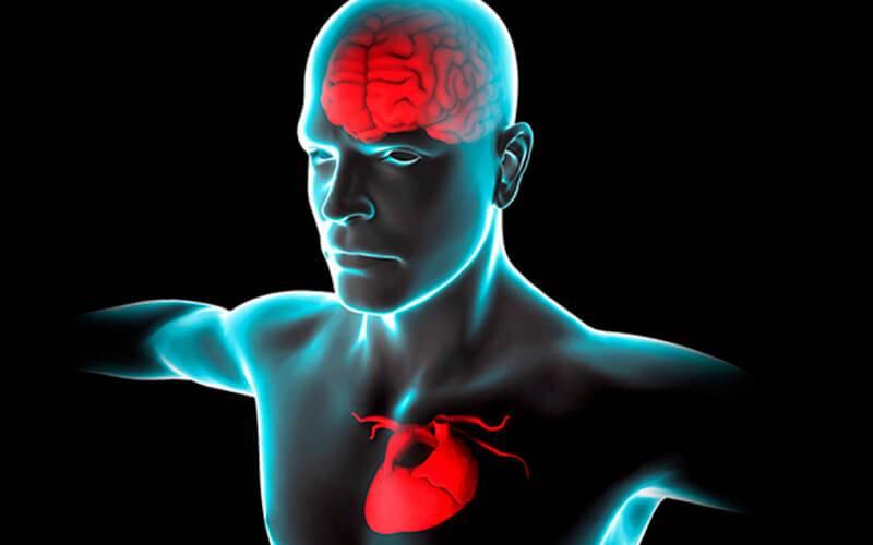 Когнитивные последствия инсульта: как восстановить здоровье?