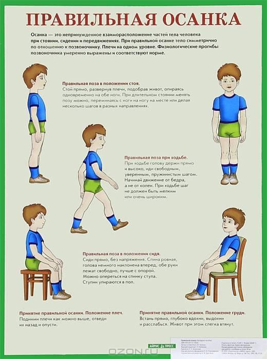 Виды нарушений осанки у детей и эффективные упражнения для коррекции