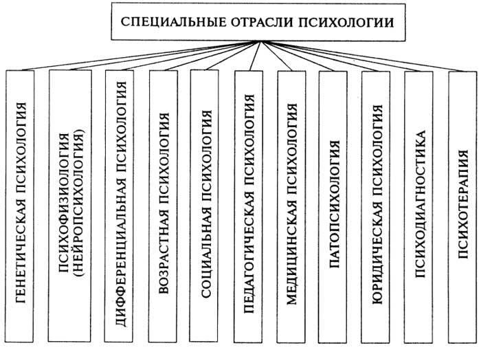 Понятие высших психических функций (выготский)