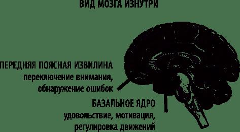 10 психологических теорий, доказывающих, что мы бездумные роботы :: инфониак