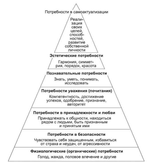 Типы и характеристика направленностей личности: структура и ее высшая форма