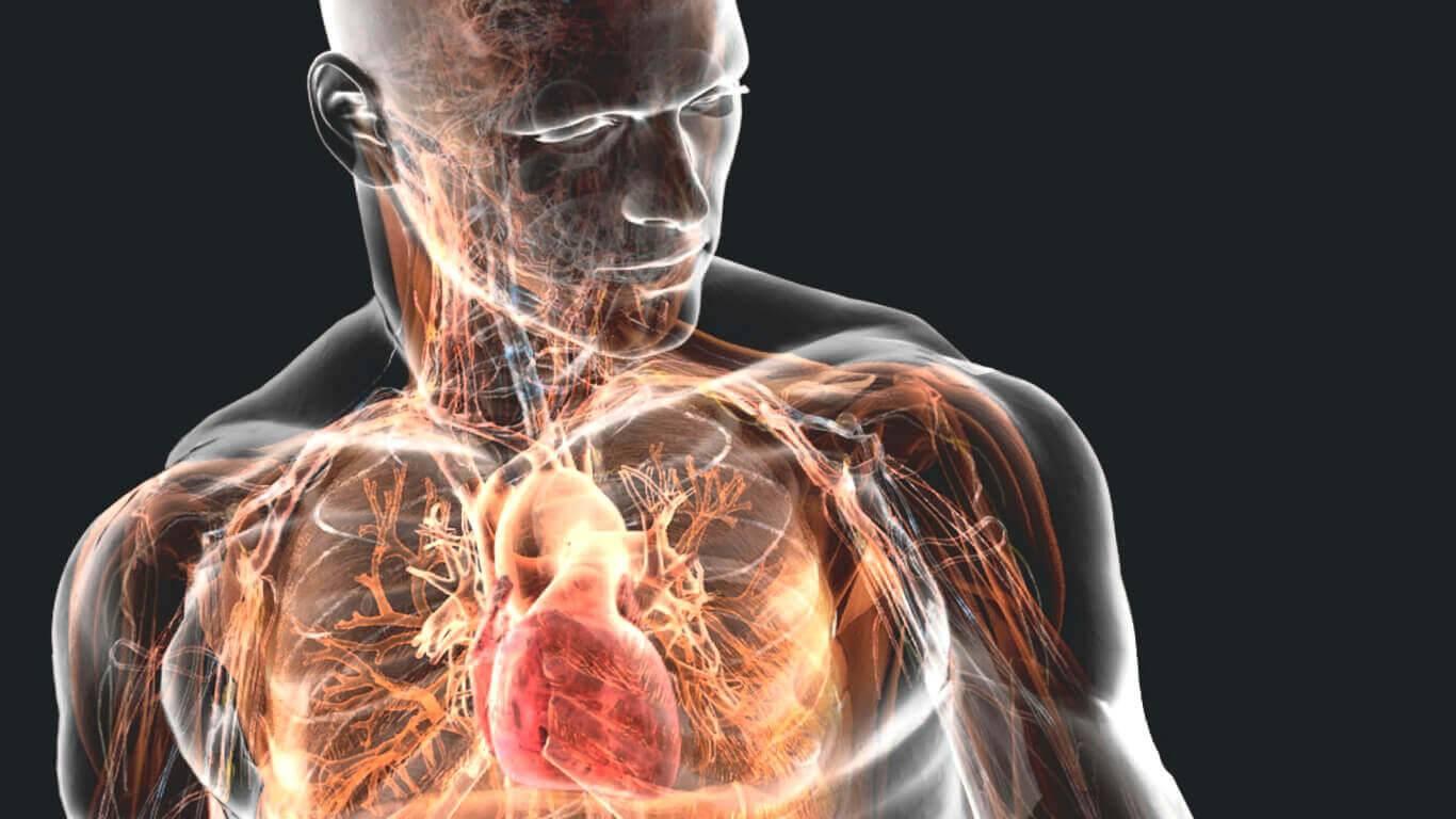 Мышечные зажимы и полумеры: 9 халтурных попыток снятия зажимов